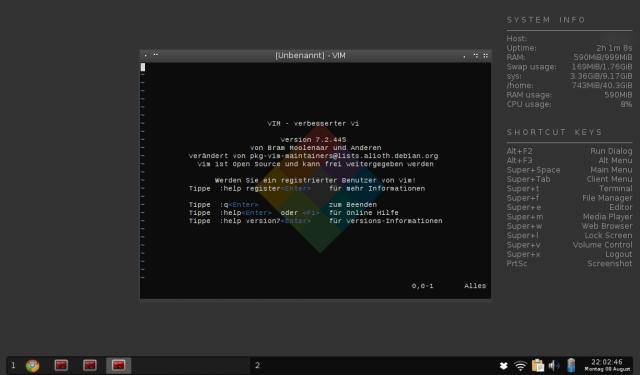 Screenshot von Crunchbang Statler mit geöffnetem Vi