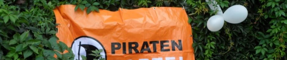 Piratensommerfest 2010